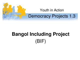 Youth in Action Democracy Projects 1.3