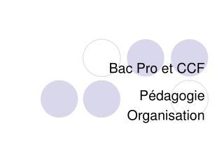Bac Pro et CCF