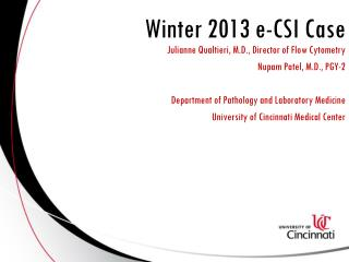 Winter 2013 e-CSI Case