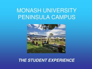 MONASH UNIVERSITY PENINSULA CAMPUS