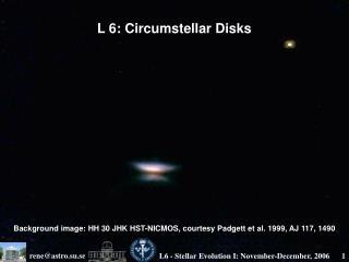 L 6: Circumstellar Disks