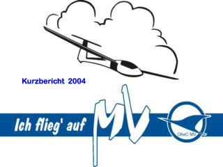 Kurzbericht  2004