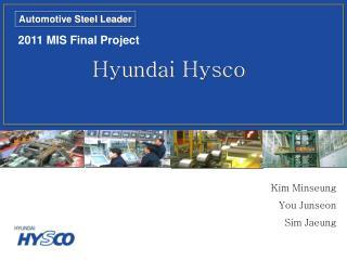 2011 MIS Final Project