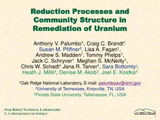 Reduction Processes and Community Structure in Remediation of Uranium