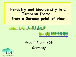 Forestry and biodiversity in a European frame -  from a German point of view