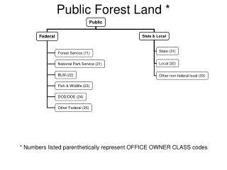 Public Forest Land *