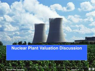 Nuclear Plant Valuation Discussion