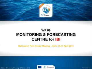 MyOcean2 First Annual Meeting – 17-18 April 2013