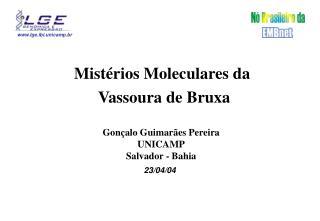 Mistérios Moleculares da  Vassoura de Bruxa