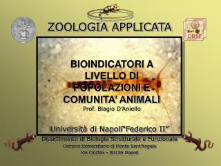 BIOINDICATORI A LIVELLO DI POPOLAZIONI E COMUNITA' ANIMALI Prof. Biagio D'Aniello