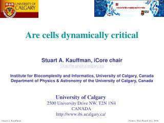 Are cells dynamically critical