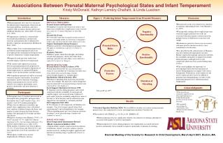 PRENATAL STRESS RISKS: Prenatal Anxiety and Depression