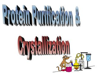 Protein Purification & Crystallization