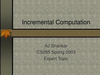 Incremental Computation