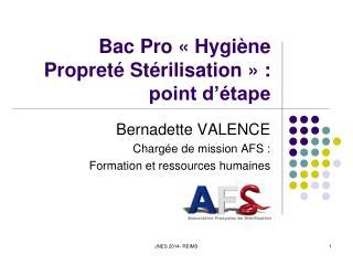 Bac Pro «Hygiène Propreté Stérilisation» : point d'étape