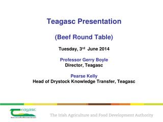 Beef Production in Ireland