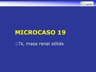 MICROCASO 19