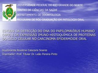 Doutoranda:Rosilene Calazans Soares Orientador: Prof. Titular Dr. Leão Pereira Pinto