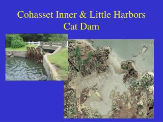 Cohasset Inner & Little Harbors Cat Dam