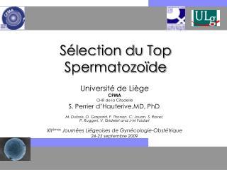 Sélection du Top Spermatozoïde