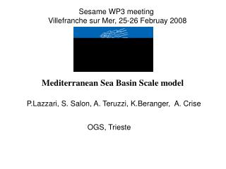 Mediterranean Sea Basin Scale model