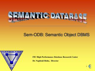 Sem-ODB: Semantic Object DBMS