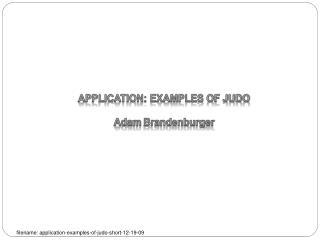 APPLICATION: EXAMPLES OF JUDO  Adam Brandenburger