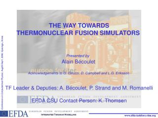 THE WAY TOWARDS THERMONUCLEAR FUSION SIMULATORS