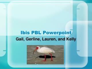 Ibis PBL Powerpoint
