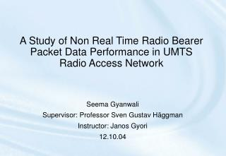 A Study of Non Real Time Radio Bearer Packet Data Performance in UMTS Radio Access Network