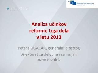 Analiza učinkov  reforme trga dela  v letu 2013