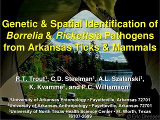 R.T. Trout 1 , C.D. Steelman 1 , A.L. Szalanski 1 ,  K. Kvamme 2 , and P.C. Williamson 3