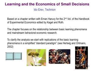 Learning and the Economics of Small Decisions
