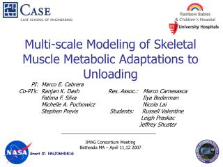 Multi-scale Modeling of Skeletal Muscle Metabolic Adaptations to Unloading