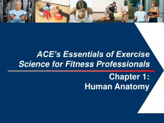 ACE's Essentials of Exercise  Science for Fitness Professionals Chapter 1:  Human Anatomy