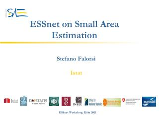 ESSnet on Small Area Estimation