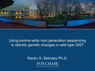 Using exome-wide next generation sequencing to identify genetic changes in wild type GIST