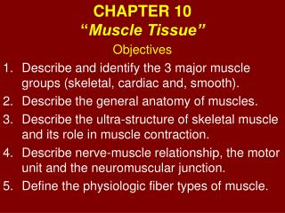 CHAPTER 10 � Muscle Tissue�