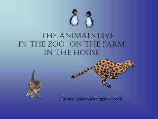 The Animals live  	in the ZOO  on the farm   			in the house