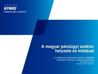 A magyar p�nz�gyi szektor helyzete �s kil�t�sai