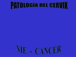 PATOLOGÍA DEL CERVIX