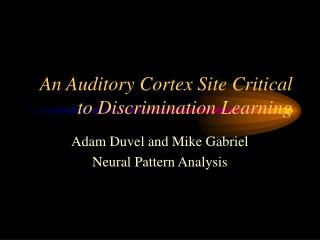 An Auditory Cortex Site Critical to Discrimination Learning