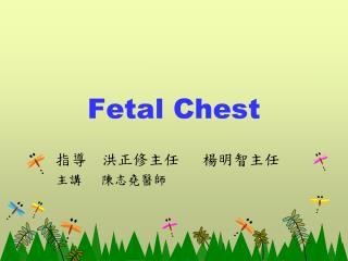 Fetal Chest