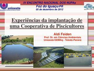 IV ENCONTRO NACIONAL DOS NUPAs Foz do Iguaçu /PR 05 de dezembro de 2012