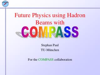 Future Physics using Hadron Beams with