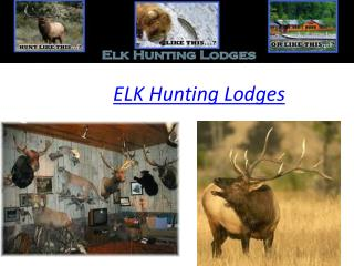 Elk Hunting Lodges