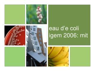 eau d'e coli igem 2006: mit