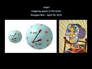 cogs1 mapping space in the brain Douglas Nitz � April 29, 2010
