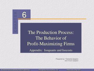 The Production Process: The Behavior of  Profit-Maximizing Firms