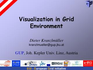 Visualization in Grid Environment